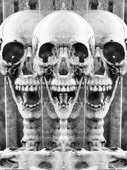 Danse Macabre (Taymaz Valley) Tags: uk usa canada iran iranian persian art artist persianart iranianart photograph photographer photography photoart nyc washington la boston chicago newyork london montreal ottawa toronto vancouver waterloo guelph cambridge march japan tokyo somontreal paris france berlin germany hongkong china russia california florida