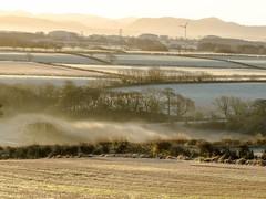 misty_morning_dogwalk_0838-5 (allybeag) Tags: crosby fields morning light mist rays crepuscular inversion misty rising trees shadows golden artyfarty