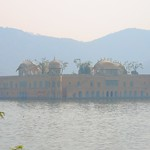 India (Jaipur) Misty view of Jal Mahal Palace in the middle of thr Man Sagar Lake1 thumbnail
