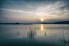 Morning (p.hakala.p) Tags: sunrise sun sea reflection sunreflection morning earlyinthemorning särkisalo salo finnishlandscapes seascape finnishseascapes