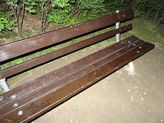 Damaged benches (Bambizoe) Tags: dresden militia night neuerteichdresden 2017 vandalism bench vandalismus vandalismo βανδαλισμόσ vandalisme 반달리즘 rongálás ヴァンダリズム wandalizm вандализм 破壞 opensourceintelligence osint zpravodajstvízotevřenýchzdrojů renseignementdoriginesourceouverte オープン・ソース・インテリジェンス 공개출처정보 białywywiad inteligênciadefontesabertas разве́дканаосно́веоткры́тыхисто́чников 公开来源情报