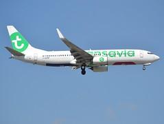 F-GZHP, Boeing 737-8K2(WL), 44566 / 5345, Transavia France, ORY/LFPO, 2017-04-03, short finals to runway 06/24. (alaindurandpatrick) Tags: to transavia transaviafrance airlines 737 737ng 738 737800 boeing boeing737 boeing737800 boeing737ng jetliners airliners ory lfpo parisorly airports aviationphotography 445665345 fgzhp
