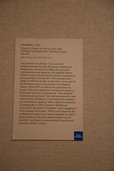 IMG_0068 (armadil) Tags: nyc metropolitanmuseumofart concinnitas artfromequations equation equations