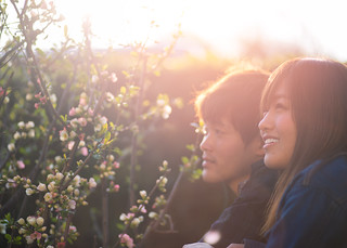 Young couple looking at quince flowers in the evening