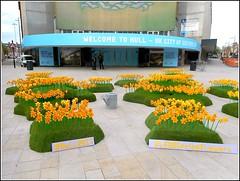 """Lego""  Spring Flowers. (** Janets Photos **) Tags: uk hullcityofculture2017 citycentres installlations culture artlegobricks"