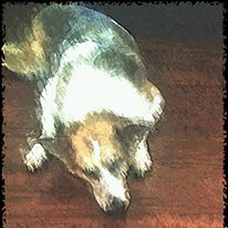 Twiz art (jak.conrad) Tags: lucy twizzler dog dogs rainbowbridge heartbroken rescue pups dogislove mutt