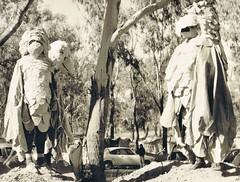 mildura galahs 75 (deadbudgie) Tags: costume mascot galah budgie canary art sculpture mildura australia 1975 dot thompson