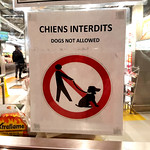 Chiens interdits - No Dogs Allowed thumbnail