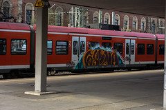 _DSC8801 (Under Color) Tags: hannover sbahn graffiti train zug db strain subway subwayart traingraffiti steel german niedersachsen