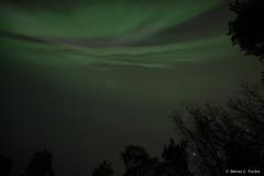 DSC_5349.jpg (marius.vochin) Tags: lights night sky stockholm longexposure outdoor amasing northenlights