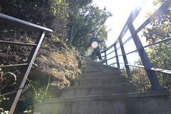 IMG_1409 (少東 兄) Tags: 爬山 福星 四獸山 虎山 獅山 豹山 象山 台北101