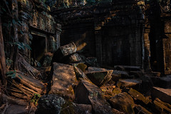 Ta Prohm Angkor (Derek Robison) Tags: cambodia angkor taprohm ruins temple goldenhour