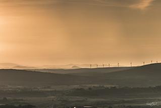 Brume sur les éoliennes