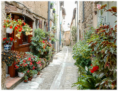 Les ruelles de Monségur (regis.muno) Tags: nikond70 monsegur gironde aquitaine rue ruelle village ruellesdemonsegur france