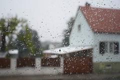 Jatkuu ... (anuwintschalek) Tags: nikond7000 d7k 18140vr austria niederösterreich wienerneustadt kodu home kevad april frühling spring lumi snow schnee lörts schneeregen piisad veetilgad droplets waterdrops aken window fenster wassertröpfchen