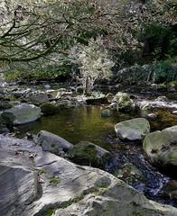 Granite boulders (billpolley) Tags: whitewaterriver codown mournepark