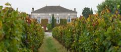 Château Fougas  4