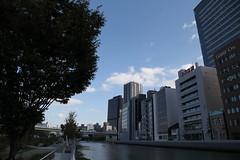 土佐堀川沿いの景色