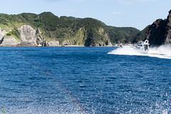 DSC_9236.jpg (d3_plus) Tags: sea sky fish beach japan ferry rainbow scenery ship diving snorkeling  suzuki shizuoka   j1  izu       skindiving minamiizu       nikon1 hirizo   nakagi nikon1j1 1nikkor185mmf18  donbanemaru  beachhirizo misakafishingport