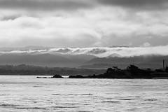 fog lifting over monterey (bostwick.john) Tags: ocean california blackandwhite seascape nature fog landscape montereybay