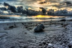 Out of Focus (dbubis) Tags: sunset stilllife beach skyline tampa landscape tampabay florida sony dramatic dunedin fl hdr bubis dbphoto nex6 dbubisphoto ilovetampabay
