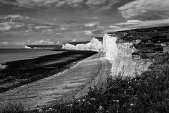 Seven Sisters at Noon (Woodacus) Tags: sea blackandwhite white seaweed flower beach nature monochrome clouds fence mono chalk petals sand flora surf stones tide steps arc rocky pebbles cliffs eastbourne bloom grasses noon curve clover botany nationaltrust sevensisters lanscape southdowns pebbly birlinggap promontory cuckmerehaven temperateflower 6225mm canonpowershots95
