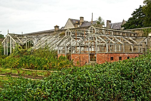 Benburb Priory greenhouses 08843