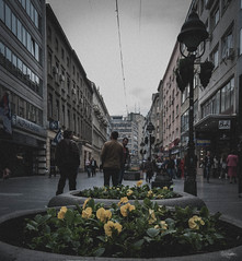 urban belgrade (cristiansamoilescu) Tags: city flowers grass nikon post centre serbia romania grainy belgrade resita procces d7000