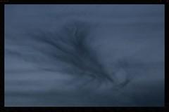 Twilight (Zelda Wynn) Tags: nature twilight tail auckland figure artgalleryofnsw cloudscape lastlight troposphere 3legs artgalleryofnewsouthwales inspiredbyalfredstieglitz zeldawynnphotography