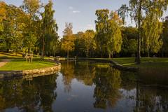 Autumn reflected in the pond (Explore) (Rudi Pauwels) Tags: blue autumn trees green fall water colors reflections göteborg pond nikon sweden schweden gothenburg ramberget sigma sverige sigma1850mm 1850mm hisingen lundby keillerspark d7100 nikond7100