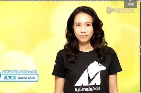The Chinese actress KAREN MOK advocating cat and dog welfare