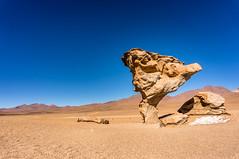 Arbol Petrificado (benjohnlamb) Tags: sculpture orange rock america plane de arbol desert south dry bolivia desierto altiplano petrificado siloli