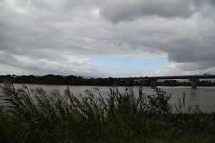 淀川の流れ