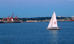 """Sailboat in Puget Sound • <a style=""""font-size:0.8em;"""" href=""""http://www.flickr.com/photos/34843984@N07/15359310698/"""" target=""""_blank"""">View on Flickr</a>"""