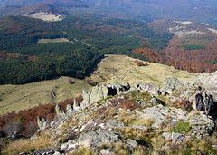 a Szekatura sziklái / the Secătura cliffs (debreczeniemoke) Tags: autumn cliff rock forest transylvania transilvania erdély ősz erdő szikla szekatura 1430m canonpowershotsx20is gutinhegység secătura munţiigutin