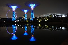 Reflections (stareian) Tags: longexposure trees reflection reflections garden lights flyer lowlight singapore nightlights nightscape nightshot dome nightview singaporecity gardensbythebay singaporeflyer gbtb dragonflylake supertrees supertreegrove