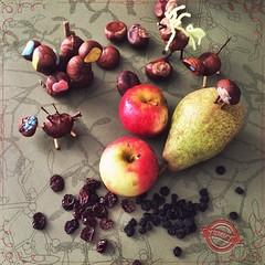 #yummi: Ingredients for a great #smoothie with #apple #pear #aroniaberries #cranberries . Now, #MrMagic, it's your turn. | Zutaten für einen leckeren Smoothie: #Apfel #Birne #Aronia-Berren & Cranberries. Nun, Mr. Magic, du bist an der Reihe! #vegan #fruit