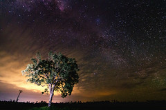 (dayvan.cowboy) Tags: light night painting landscape long exposure space queensland blackbutt