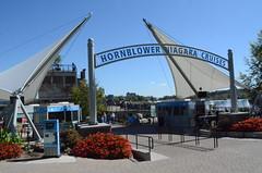 Hornblower Niagara Cruises - Ticket Plaza (Niagara Cruises) Tags: ontario canada niagarafalls experience naturalwonder attraction hornblower niagaracruises hornblowerniagaracruises