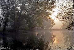 Morning lights (alfvet) Tags: reflections river nikon alba fiume ngc natura npc acqua autunno riflessi luce vigevano parcodelticino veterinarifotografi d5100