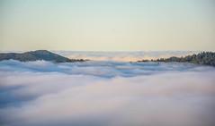 Foggy Mountain Morning-19 (Matthew Folsom) Tags: morning santacruz mountains fog highway9