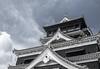 Kumamoto 5 : 熊本城 (v)