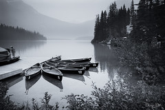 Pick a Number (Carrie Cole Photography) Tags: lake canada reflection tourism nature water landscape rockies boat bc britishcolumbia scenic canoe canoes rockymountains boathouse emerald emeraldlake canadianrockies sonynex7 carriecole carriecolephotography