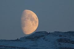 The Moon tonight (*Jonina*) Tags: iceland ísland faskrudsfjordur fáskrúðsfjörður moon tunglið jónínaguðrúnóskarsdóttir 50faves 500views 2000views 4000views
