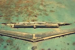 Rust bucket. (Joseph Skompski) Tags: cars car emblem rust classiccar pennsylvania rusty cadillac hershey rustymetal hersheypa