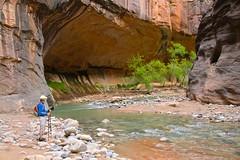 IMG_1987 (bluegrass0839) Tags: canyon national hoodoo bryce zion zionnationalpark brycecanyon nationalparks narrows hoodoos horsebackride parkthe