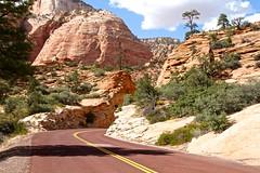 IMG_2322 (bluegrass0839) Tags: canyon national hoodoo bryce zion zionnationalpark brycecanyon nationalparks narrows hoodoos horsebackride parkthe
