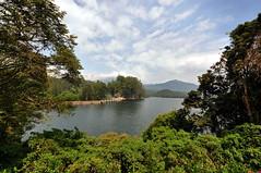 India - Kerala - Munnar - Kundala Lake - 11 (asienman) Tags: india mountains kerala hills teafactory teaplantation munnar teapicker asienmanphotography teaplantagens