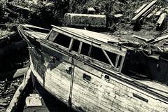 Wreck 2 (PAJ880) Tags: cabin cruiser wreck east boston ma scrapyard marine haror urban waterfront bw black white mono sepia chelsea creek