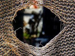 A Stitch in Time Saves Nine (Steve Taylor (Photography)) Tags: astitchintimesavesnine hole netting fence black brown red blue green newzealand nz southisland canterbury christchurch cbd city bokeh